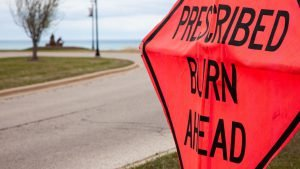 Prescribed Burn Ahead