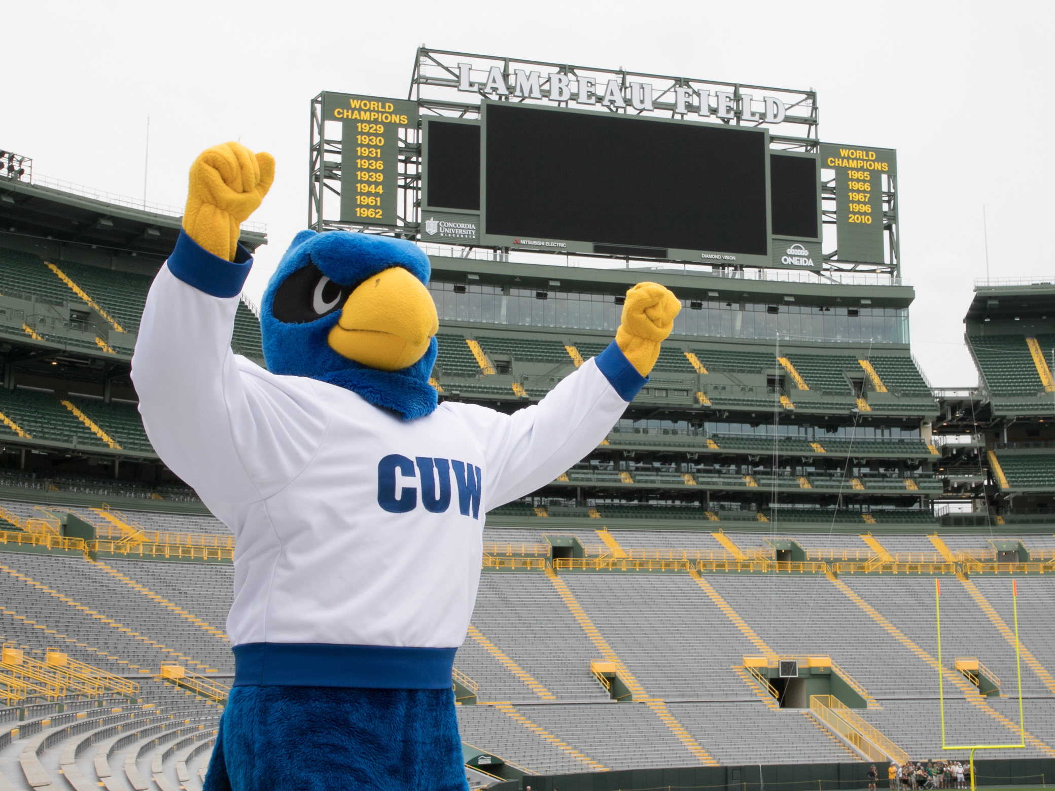 Concordia Partners With The Green Bay Packers To Showcase Its Mba Program